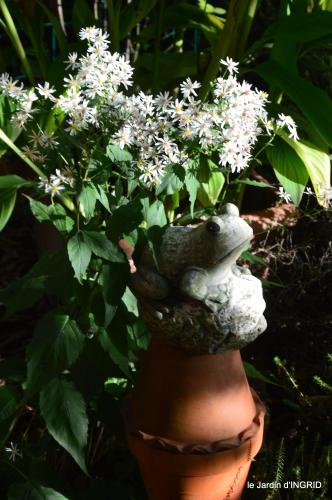 jardin en septembre,les cygnes 017.JPG