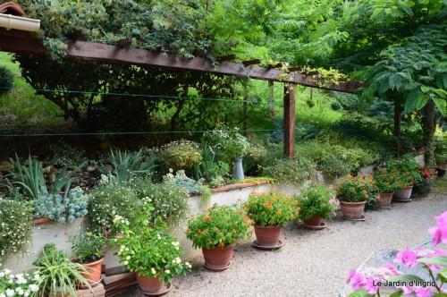 jardin 004.JPG
