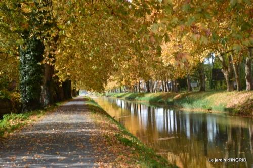 canal automne ,jardin,Ines 086.JPG