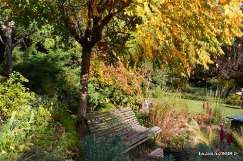 automne, décos cucurbitacées,jardin 039.JPG