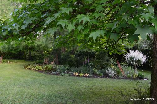 trémolat,oiseaux,jardin,cygnes,roses, 089.JPG