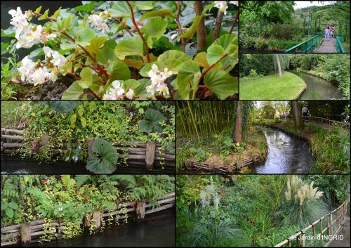 2016-09-13 bouquet,jardin de Monet,les vaches,Pourville sur mer5.jpg