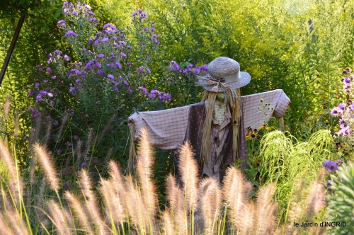 jardin en septembre,les cygnes 035.JPG