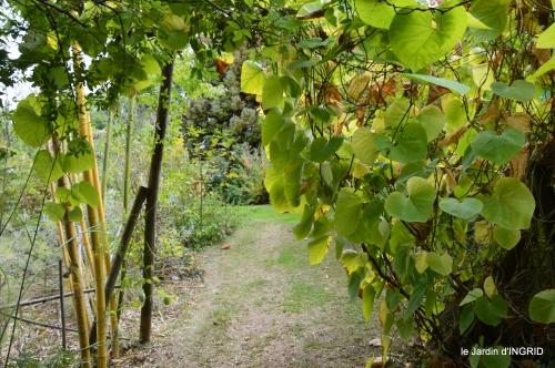 brocante st avit Se.jardin st Avt,récolte tomates 066.jpg