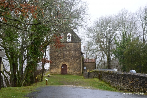 bulbes,perce neige,narcisse,pluie,hélébore,chapelle 148.jpg