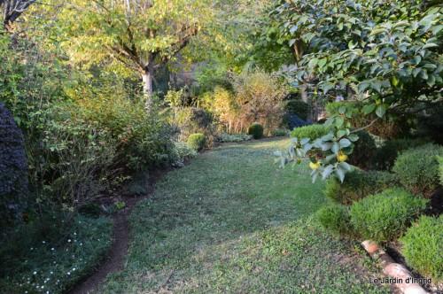 jardin octobre 064.JPG