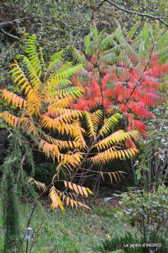 canal automne ,jardin,Ines 081.JPG