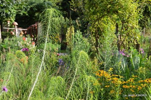 confiture,bouquet,petit jardin 070.JPG