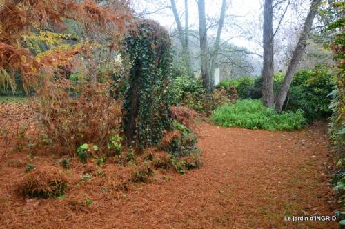 Brouillard,cypres chauve,jardinage 044.JPG
