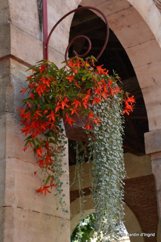 jardin,fleurs blanches 044.JPG
