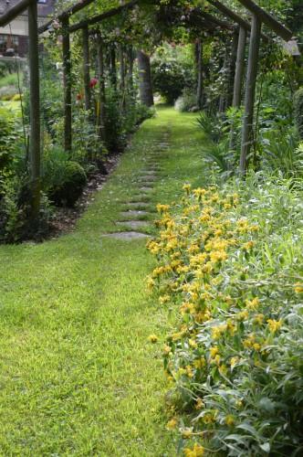 tour du jardin en juin 123.JPG