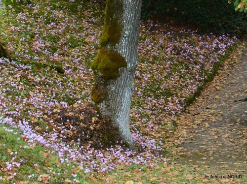 jardin pluie,chateau Losse 088.JPG