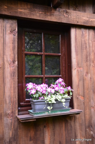 Arya,roses,cygnes,coulobre,nigelles,abeille,cabane 130.JPG