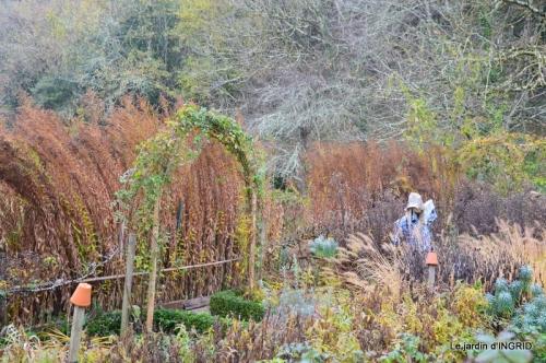 Brouillard,cypres chauve,jardinage 065.JPG