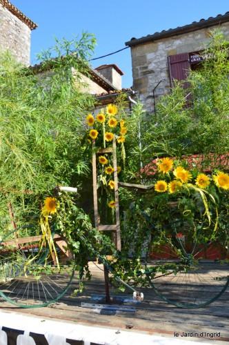 tournesols,podium,Lucas,jardin,Calès 043.JPG