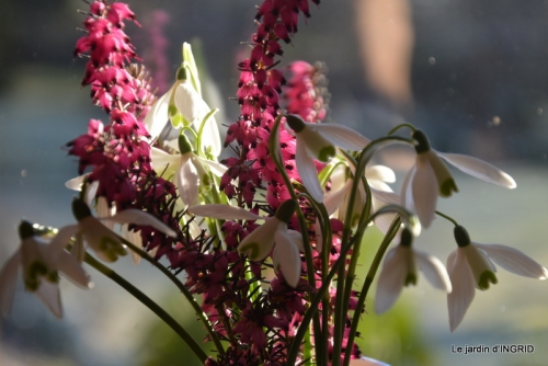 coeur,jardin,Sol 029.JPG