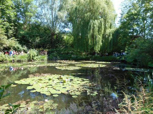 Normandie,jardin Monet,baie de Somme,chez Marylaur 207.JPG