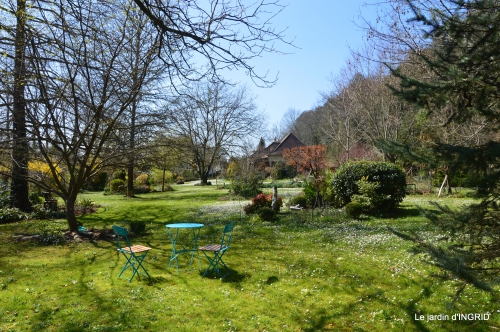 saumon,paquerettes,jardin blanc 077.JPG