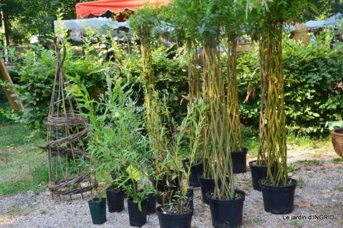 Issigeac paniers,visite Brigitte Mathis,jardin 004.JPG