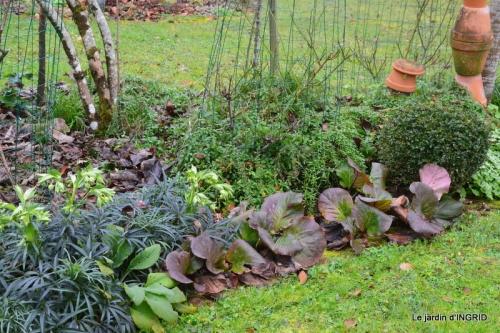 jardin d'hiver 036.JPG