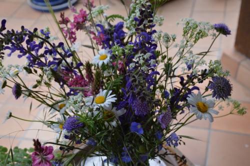 jardin,premières roses,colline,avant l'orage 006.JPG