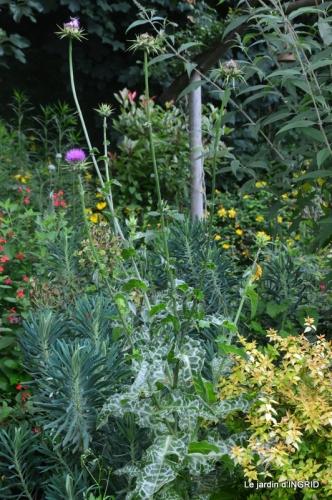hémérocalles,Doprdogne,canal,bouquet fruit,jardin 047.JPG