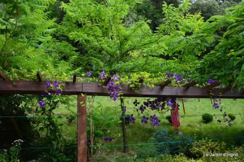 jardin,visites enfants 060.JPG