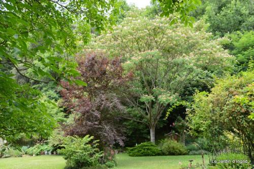 chez Fabien,le canal,jardin,hémérocalles,le souci,potager 093.JPG