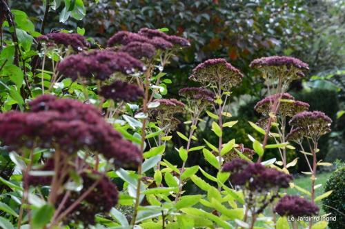 jardin serre bucher automne 002.JPG