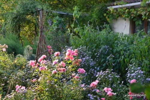 fleurs petit jardin,bouquets,grand jardin 087.JPG