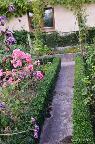 jardin,petit jardin,nénuphard,papillons 054.JPG