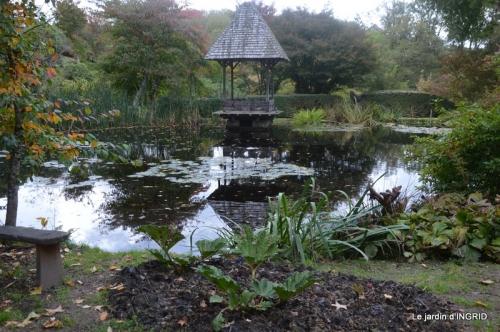 la Sedelle,étang de Riault,cyclamens 044.JPG