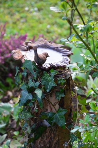 les filles,les patons,jonquilles,jardin 084.JPG