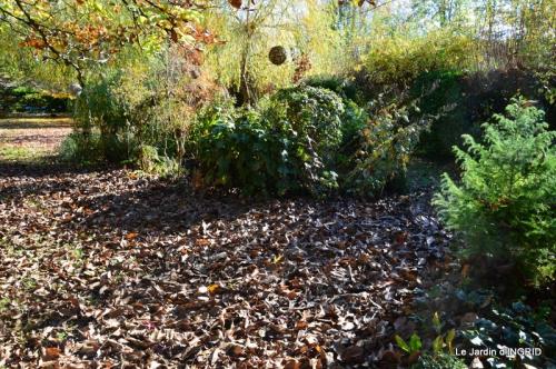 Romefort,bord de Creuse,vent,feuilles,jardin,canal 101.JPG