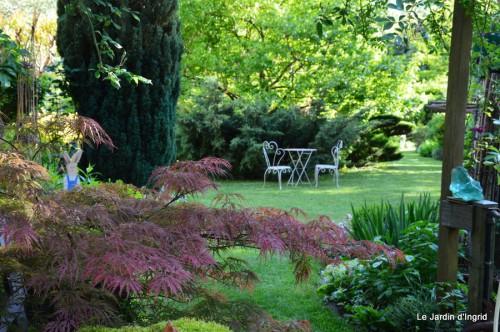 roses,Lalinde,toit cabane,pourpre,eglise,jardin tondue 137.JPG