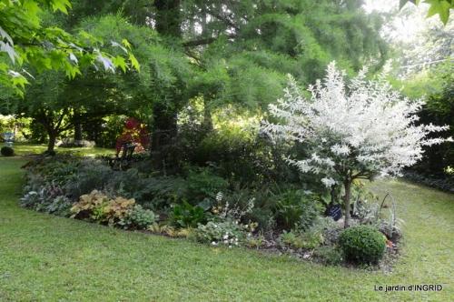 portes ouvertes,taille marguerittes,jardin 028.JPG