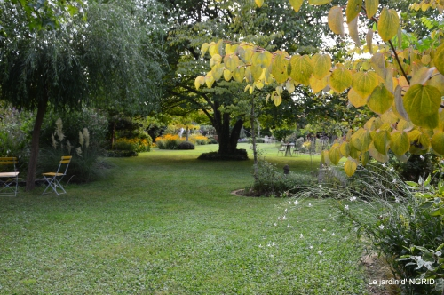 panier,composition,St Astier,jardin,lavande 084.JPG
