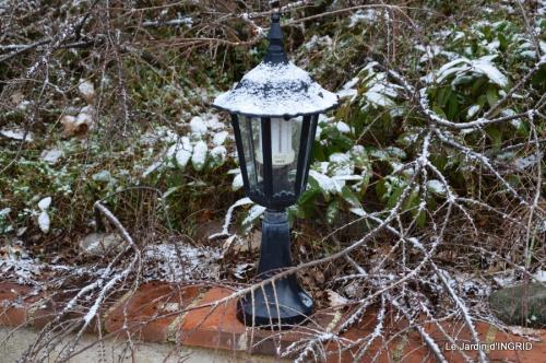 oiseaux première neige 039.JPG