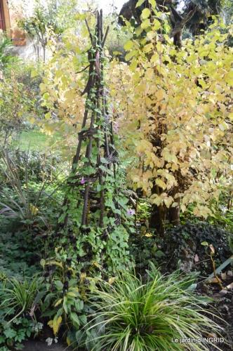 citrouille fleurie,décos jardin,automne 079.JPG