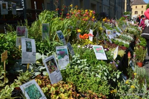 muguet,féte des fleurs Lalinde,jardin 081.JPG