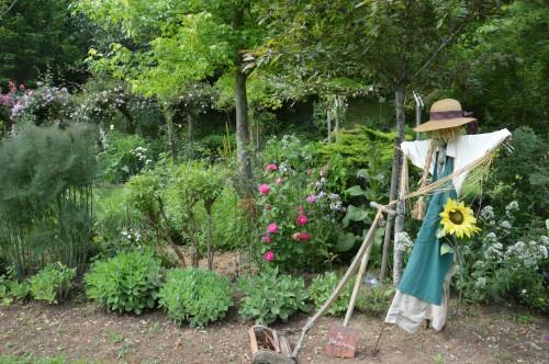 tour du jardin en juin 129.JPG