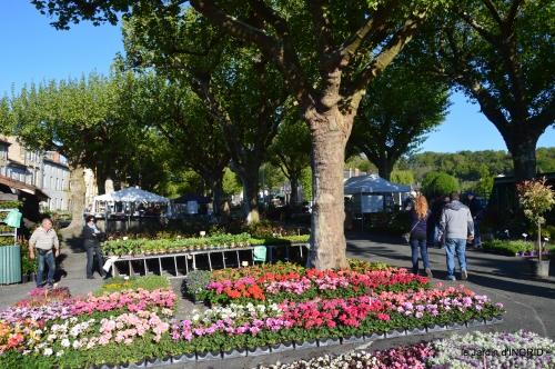 coquelicots,fête des fleurs Lalinde,fouleix,jardinage 055.JPG
