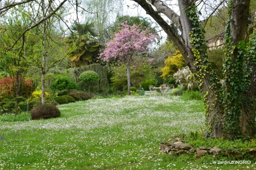 jardin printemps 105.JPG