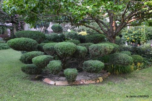 jardin,chez Bernadette,puces,cygnes,pluie 010.JPG