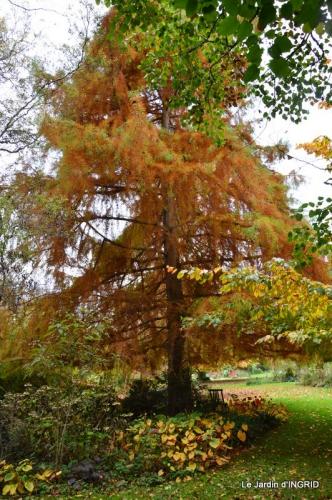 les arbres en automne,cabane 032.JPG