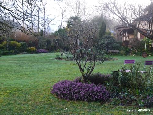 enveloppes,oiseaux,jardin,héllébores 058.jpg