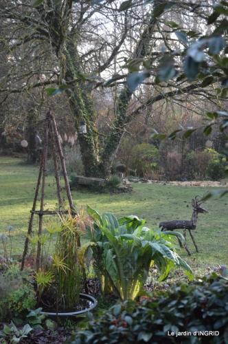 hiver au jardin,broyage 030.JPG