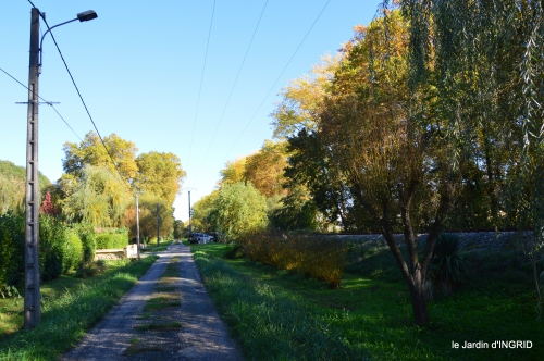jardin automne,voisinage,canal 158.JPG