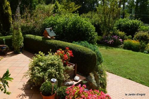 pluviomètre,hibiscus,jardin,coucher de soleil 010.JPG