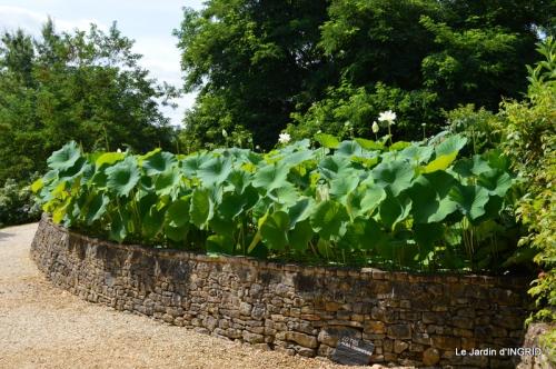 les jardins d'eau de Carsac 034.JPG